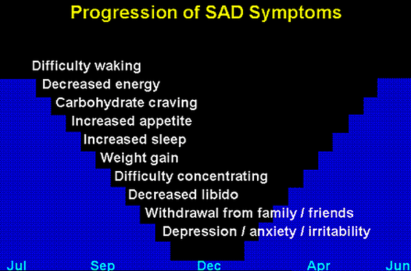 seasonal affective disorders essay